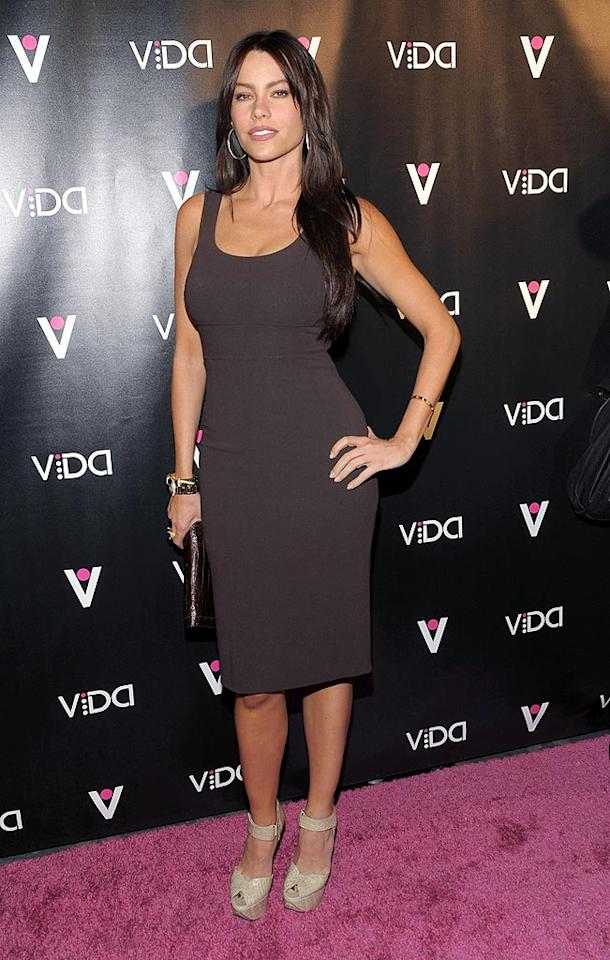 "Sexy ""Modern Family"" star Sofia Vergara hosted the event, which was a launch party for the ""world's most fashionable luxury pleasure object."" Michael Buckner/<a href=""http://www.gettyimages.com/"" target=""new"">GettyImages.com</a> - January 13, 2010"