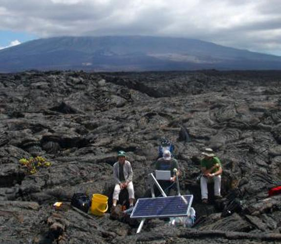 Sierrga Negra is the largest and most active volcano in the Galapagos.