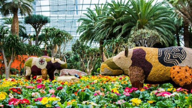 """<p><a href=""""http://www.gardensbythebay.com.sg/en/whats-on/calendar-of-events/2016-tribal-tempo/tribal-tempo-about-floral-display.html""""><b>Tribal Tempo Floral Display</b></a></p><p>Catch this South African-themed floral display while it's still on at Gardens by the Bay. Get to see the artichoke-like Proteaceae flower varieties, a striking waterfall that's the centrepiece of this floral display, recreations of wildflower fields that bloom in Namaqualand, as well as other exotic and vibrant blooms. Do sign up for the daily tours to find out more about the blossoms that are on show.</p><p>When: From now until Oct 30, 9am to 9pm</p><p>Where: Gardens by the Bay, Flower Dome, 18 Marina Gardens Drive</p><p>Prices: From $8 to $28 for tickets to the conservatories</p>"""