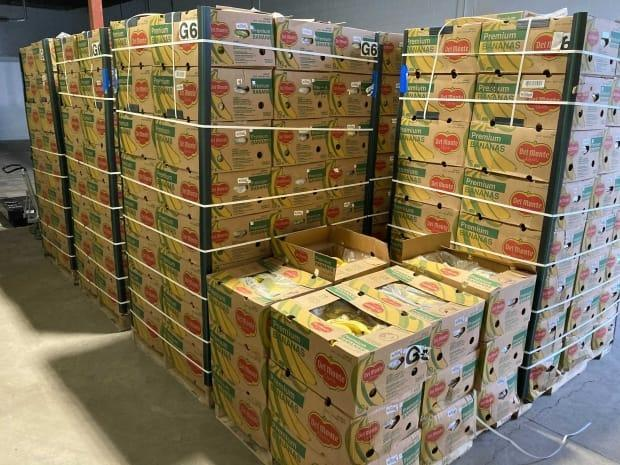 Leftovers Foundation received a large donation of bananas on Feb. 26 and said it needed help finding homes for them before they spoil. (Submitted by Leftovers YYC - image credit)