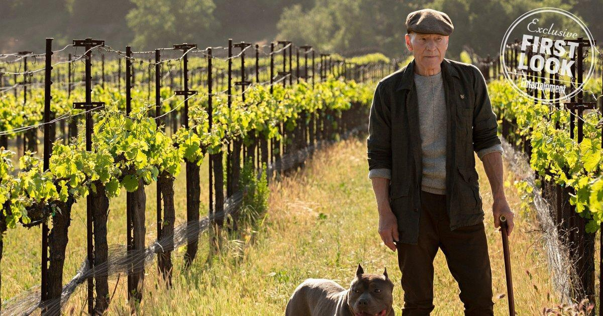 Star Trek: Picard producer reveals 7 new details about series