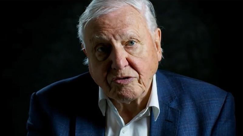 David Attenborough has spoken of Australia's devastating bushfires, drawing the connection between them and climate change. Source: