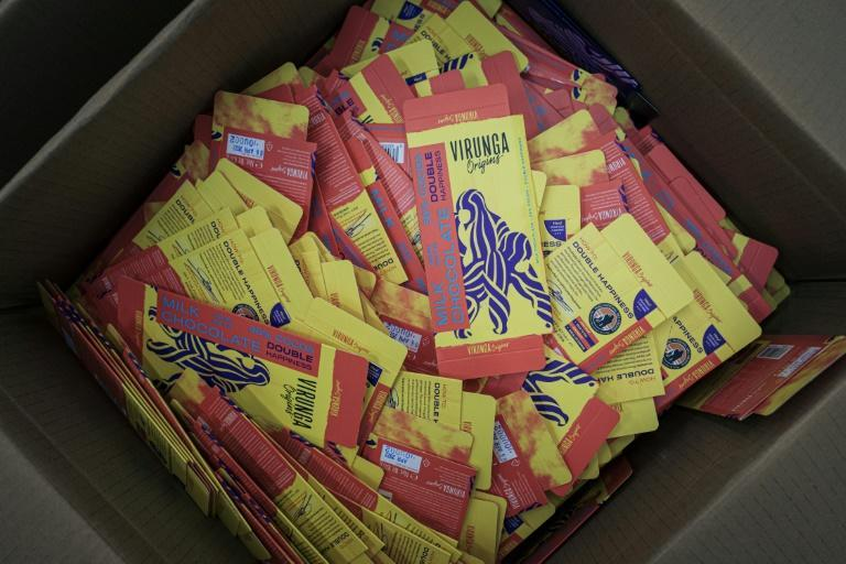 Last December, a few months after the first chocolate bars were marketed, Mutwanga and neighbouring communities were hit by deadly attacks blamed on ADF rebels (AFP/ALEXIS HUGUET)
