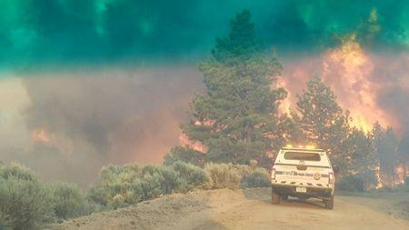 FILE PHOTO: Flames rise from a treeline near an emergency vehicle during efforts to contain the Spring Creek Fire in Costilla County