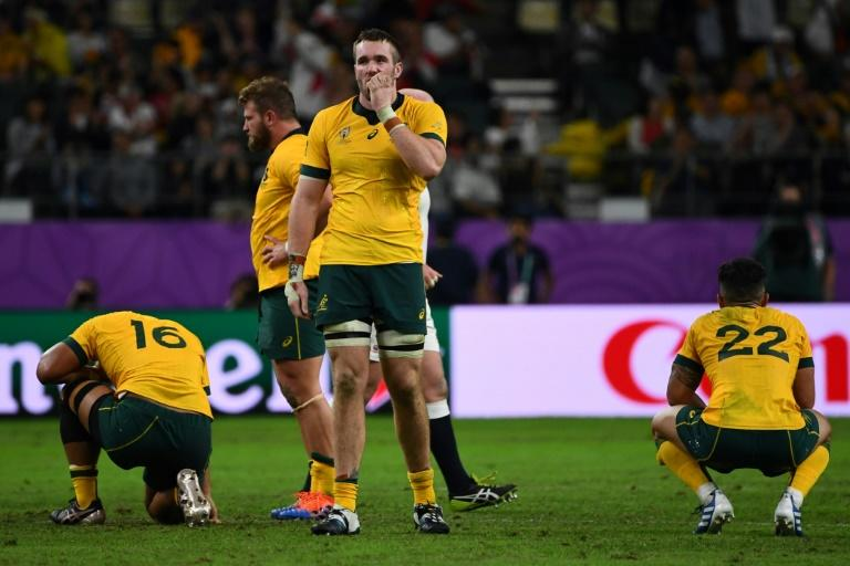 Australia are looking for a new coach after they were knocked out of the Rugby World Cup