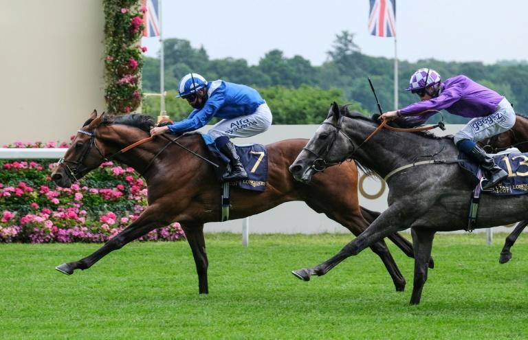 """Jim Crowley says it would be """"special"""" to win his first English classic in the blue and white colours of the late Sheikh Hamdan bin Rashid al Maktoum"""