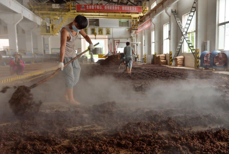 Employees work on a production line for Chinese liquor Baijiu at a brewery in Xishui