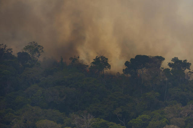 The Amazon rainforest is experiencing an 85 percent spike in wildfires this year. Most of them have been man-made. (AP Photo/Victor R. Caivano)