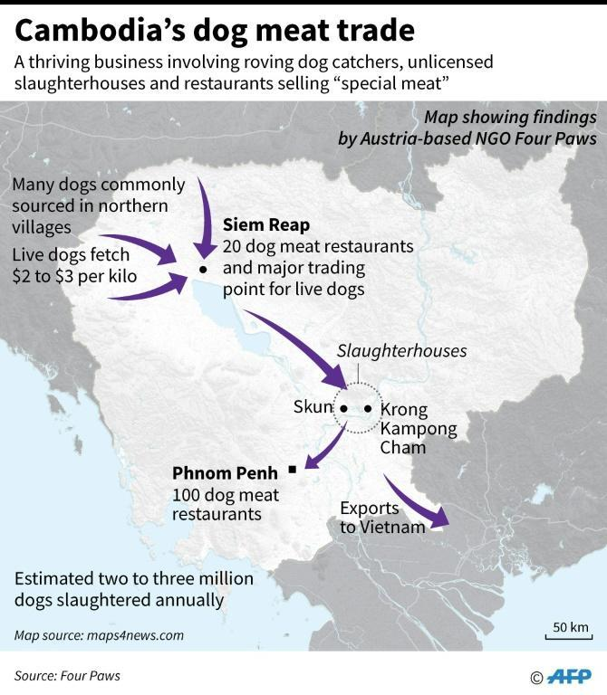 Map of Cambodia showing the dog meat trade routes, according to NGO Four Paws. (AFP Photo/Laurence CHU)