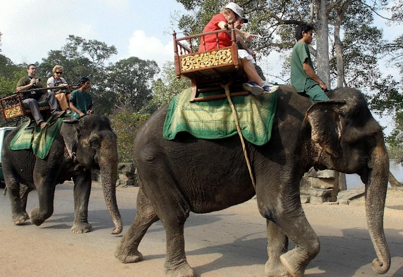 Elephant rides are popular with tourists visiting Cambodia's Angkor Wat temple