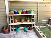 <p>No garden space to spare? Create a succulent shelf with blocks and boards.</p>