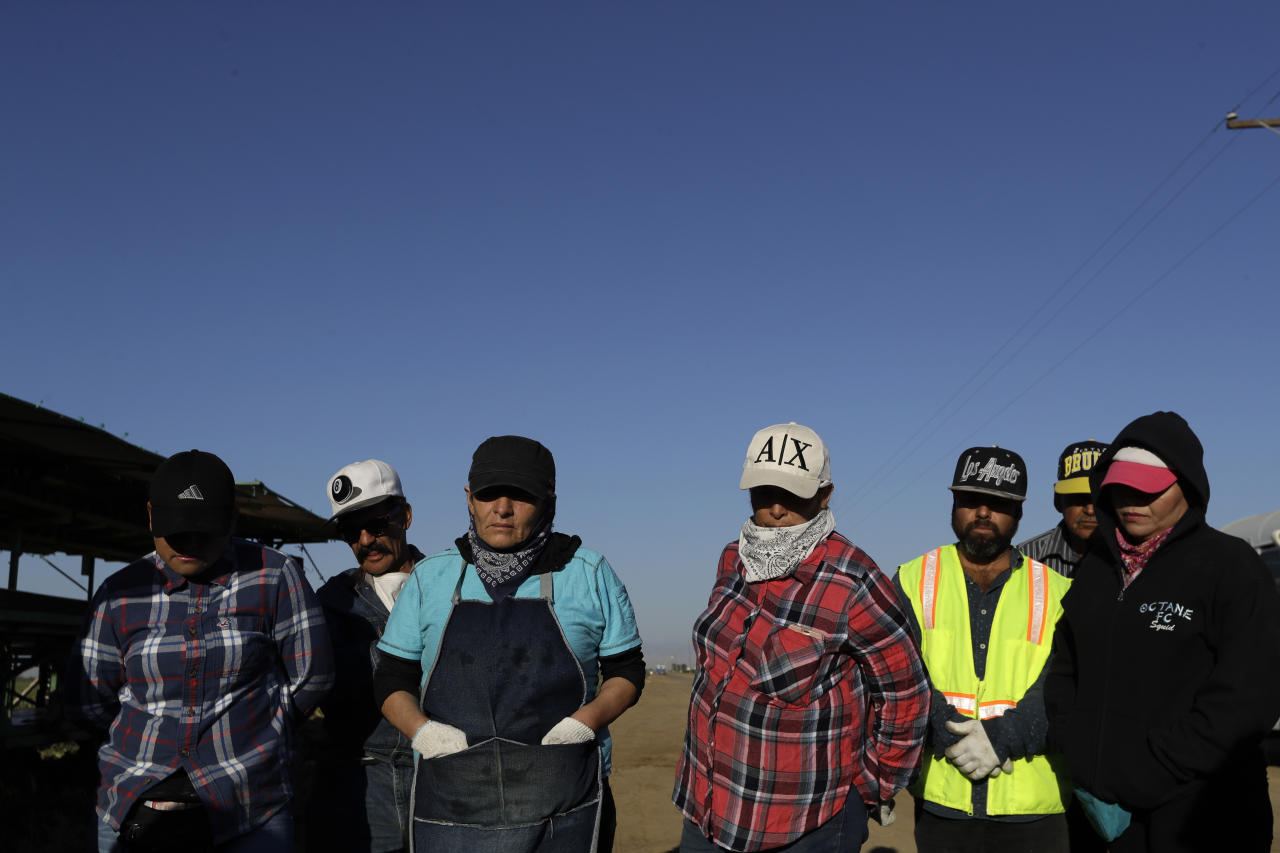 In this Thursday, Sept. 20, 2918 photo, farmworkers wait to start picking melons, near Five Points, Calif. The region is unrivaled for farm production, but the rich earth has not given back equally to those who toil out of view of millions of tourists and Californians who pass through the valley each year. (AP Photo/Marcio Jose Sanchez)
