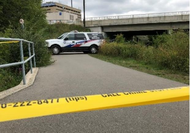 Homicide detectives investigate after body of man found near West Humber Trail in Etobicoke