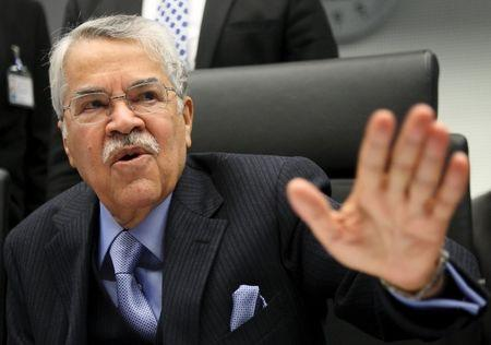 File picture of Saudi Arabian Oil Minister al-Naimi talking to journalists before a meeting of OPEC oil ministers at OPEC's headquarters in Vienna