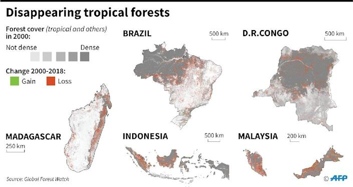 Map showing forest cover since 2000, in the five most affected countries (AFP Photo/Simon MALFATTO)
