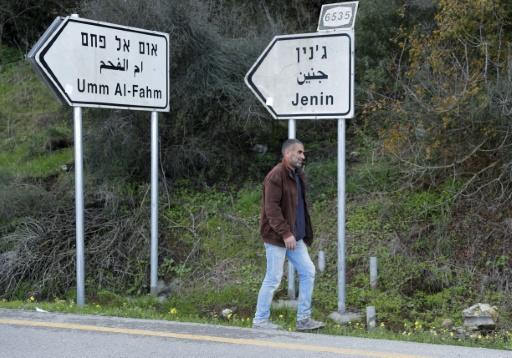 An Arab-Israeli NGO says a clause in US President Donald Trump's peace plan to disenfranchise 260,000 Israeli Arabs amounts to 'racially-motivated separation'