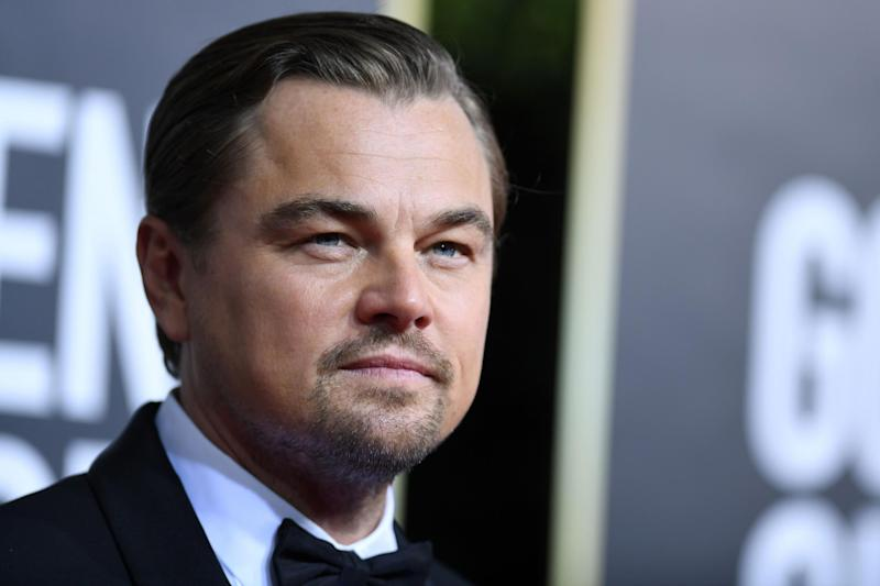 Leonardo DiCaprio reportedly sprang into action to save a man who had fallen off a Club Med yacht: AFP via Getty Images