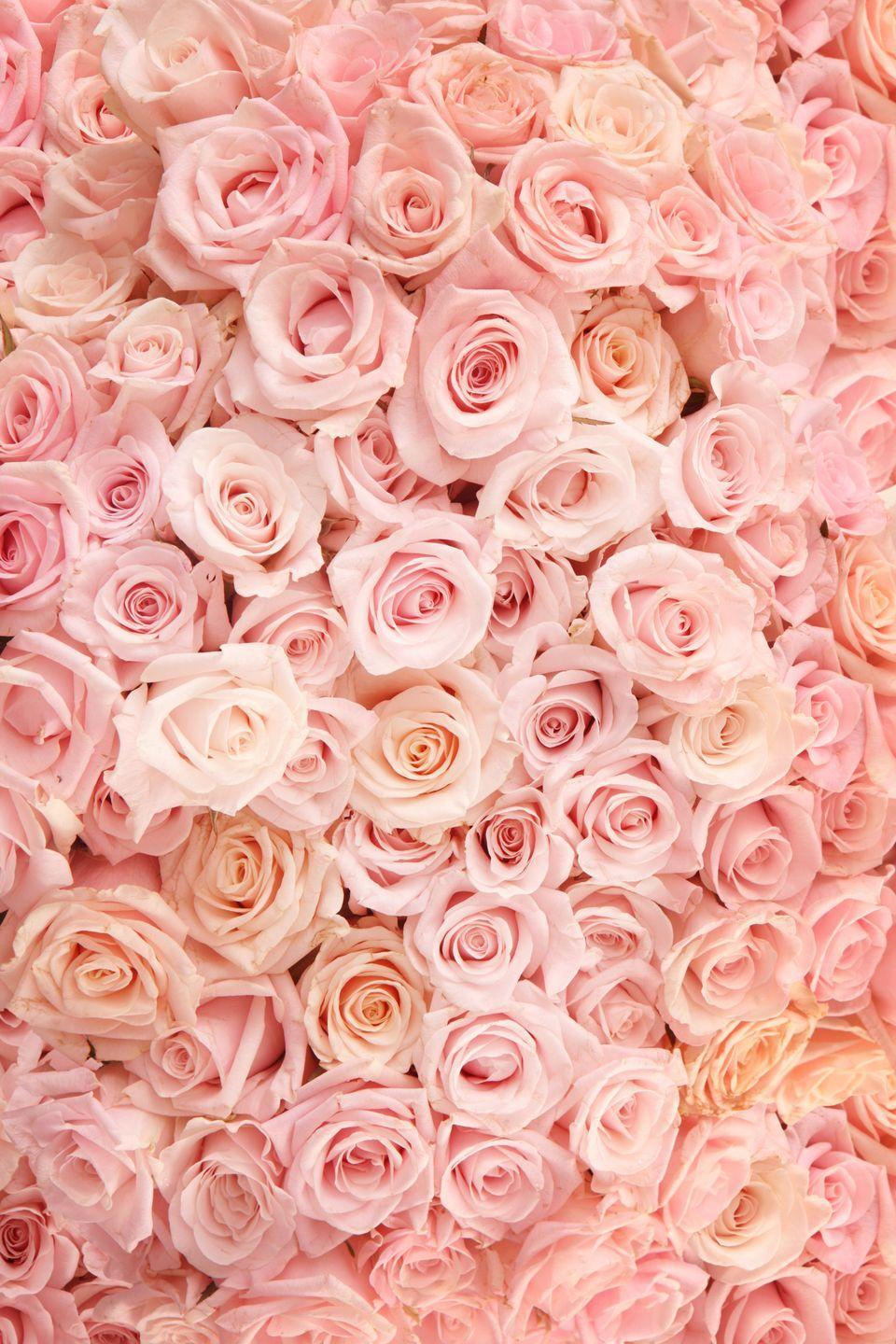 """<p>Deliver the gift of <a href=""""https://www.proflowers.com/blog/rose-colors-and-meanings"""" rel=""""nofollow noopener"""" target=""""_blank"""" data-ylk=""""slk:grace and elegance"""" class=""""link rapid-noclick-resp"""">grace and elegance</a> when you send your sweetheart these pretty blooms.</p><p><a class=""""link rapid-noclick-resp"""" href=""""https://go.redirectingat.com?id=74968X1596630&url=https%3A%2F%2Fwww.1800flowers.com%2Fpretty-in-pink-rose-bouquet-104958&sref=https%3A%2F%2Fwww.goodhousekeeping.com%2Fholidays%2Fvalentines-day-ideas%2Fg1352%2Frose-color-meanings%2F"""" rel=""""nofollow noopener"""" target=""""_blank"""" data-ylk=""""slk:SHOP PINK ROSES"""">SHOP PINK ROSES</a> </p>"""