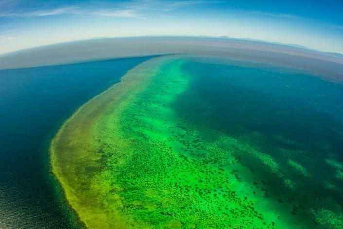 Coral reefs, like Australia's Great Barrier Reef pictured here, are particularly vulnerable