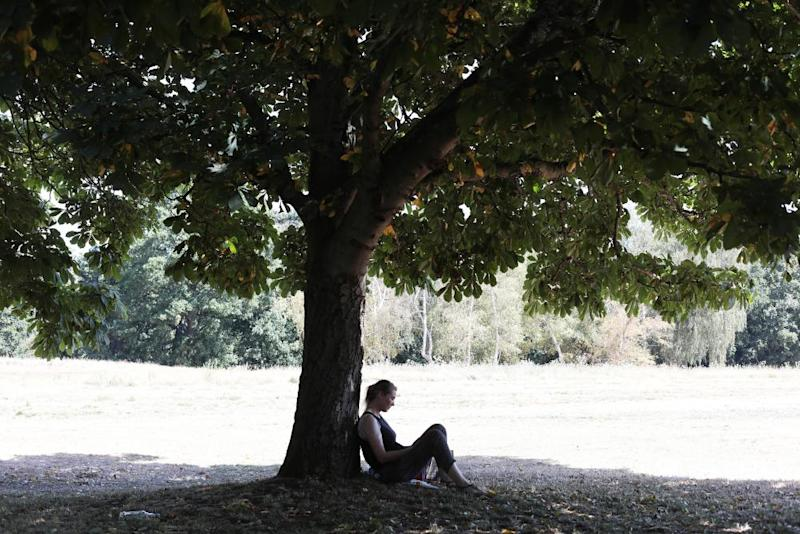 A woman stays out of the hot sun in Beckenham Place Park.