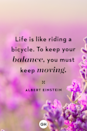 <p>Life is like riding a bicycle. To keep your balance, you must keep moving.</p>