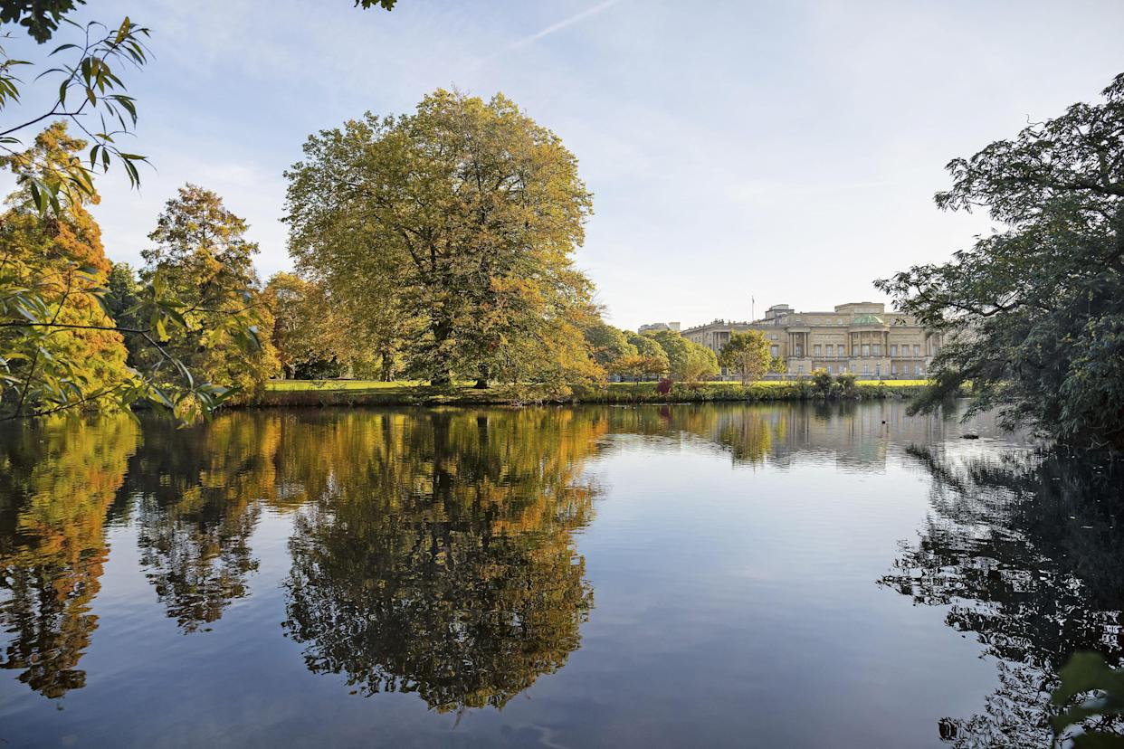 Buckingham Palace viewed from across the garden's 3.5 acre lake