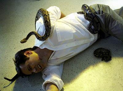 """While investigating a series of deaths involving rattlesnakes and religious worship, Agent Mulder (David Duchovny) fights off deadly snakes in the """"Signs and Wonders"""" episode of Fox's The X-Files X-Files"""