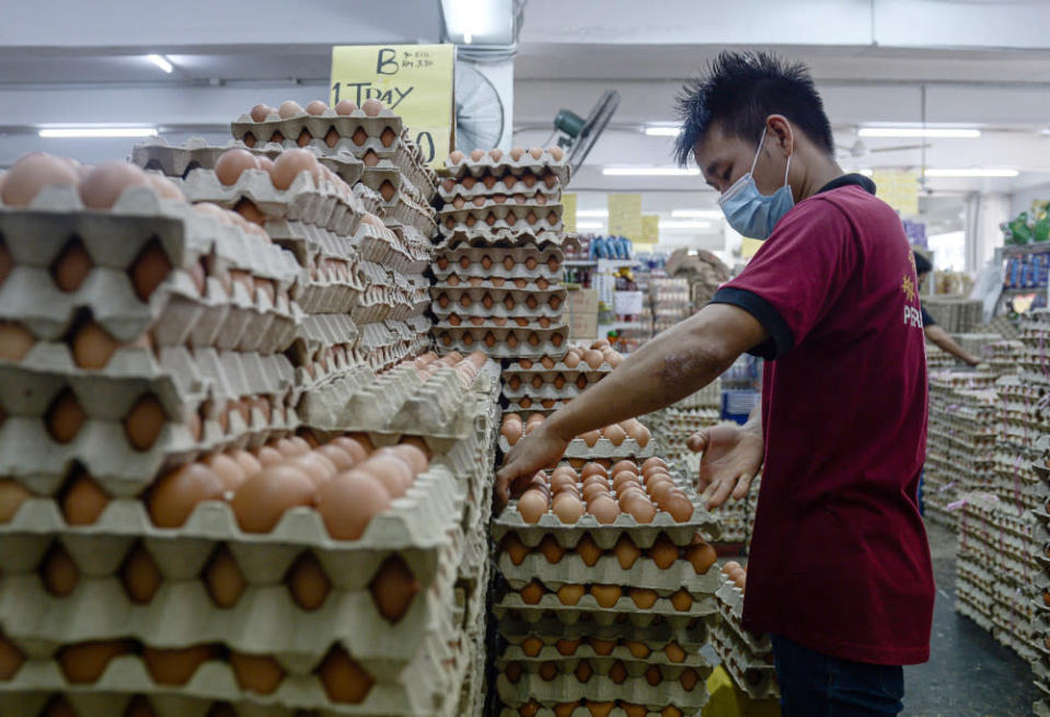 DVS that SE or Salmonellosis is among several diseases monitored across all egg farms nationwide under its Biosecurity Management and SPS Division. — Bernama pic