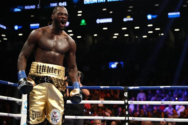 Deontay Wilder celebrates after knocking down Bermane Stiverne in the first round during their rematch for Wilder's WBC heavyweight title on November 4, 2017 (AFP Photo/AL BELLO)