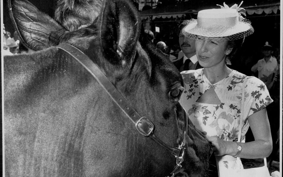 Princess Anne judging the Royal Easter Show - Getty