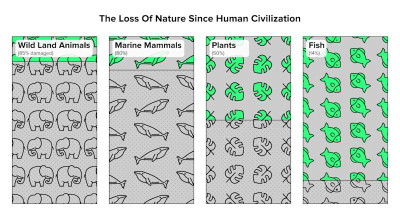 Humans have caused the loss of around 80 percent of wild land and marine mammals, and half of plants. Source: Yinon M. Bar-On, Rob Phillips, and Ron Milo, PNAS, 2018 (Jade Marucut for HuffPost)
