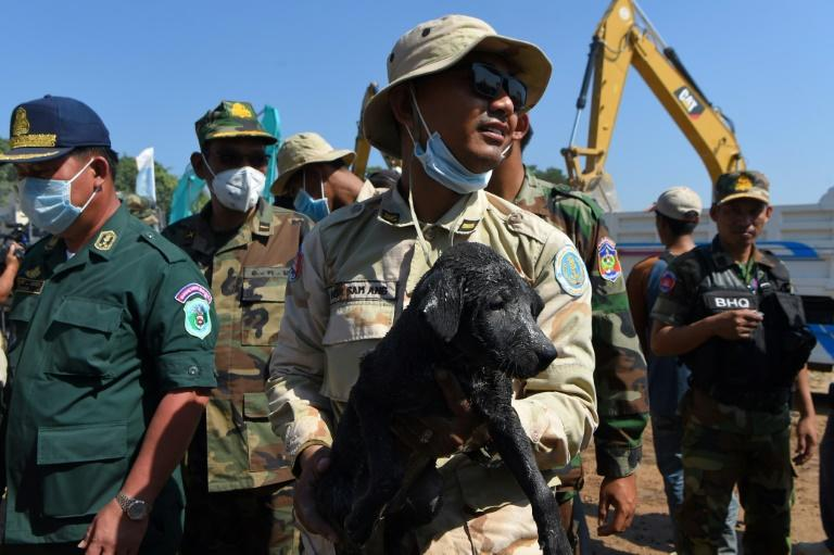 A rescuer carries a puppy that was found underneath rubble of an under-construction building that collapsed in southern Cambodia (AFP Photo/TANG CHHIN Sothy)