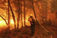 In this photo provided by Mike McMillan, firefighters battle the Windy Fire near Johnsondale, Calif., on Wednesday, Sept. 22, 2021. The Windy Fire has burned through nearly 57 square miles (148 square kilometers) on the Tule River Indian Reservation and in Sequoia National Forest, including Giant Sequoia National Monument. Ignited by lightning on Sept. 9, the Windy Fire has forced evacuation of of small forest communities but no privately owned structures had burned as of Thursday morning. (Mike McMillan via AP)