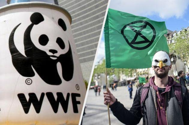 Extinction Rebellion has hit out at WWF this week (Photo: Getty)