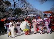 FILE PHOTO: Visitors from abroad wearing kimono clothes look at blooming cherry blossoms at Ueno park in Tokyo, Japan
