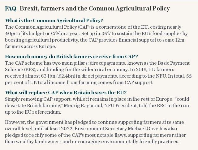 FAQ | Brexit, farmers and the Common Agricultural Policy