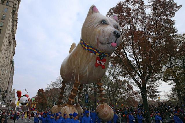 <p>Trixie the Dog balloon floats in the 90th Macy's Thanksgiving Day Parade in New York, Thursday, Nov. 24, 2016. (Photo: Gordon Donovan/Yahoo News) </p>