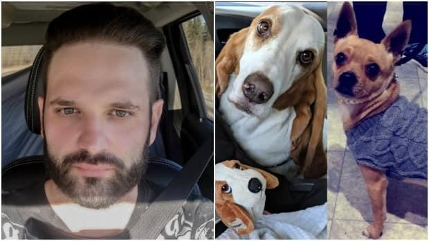 John Geick is accused of fatally beating Sophie the basset hound and Tyler the Chihuahua in February 2019.  (Facebook, Jo Smith  - image credit)
