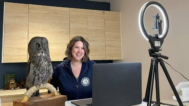 Submitted/Wildlife Haven Rehabilitation Centre