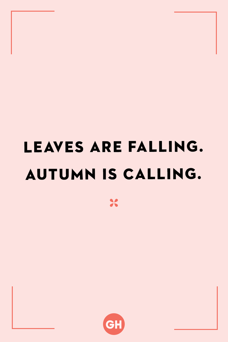 <p>Leaves are falling. Autumn is calling.</p>