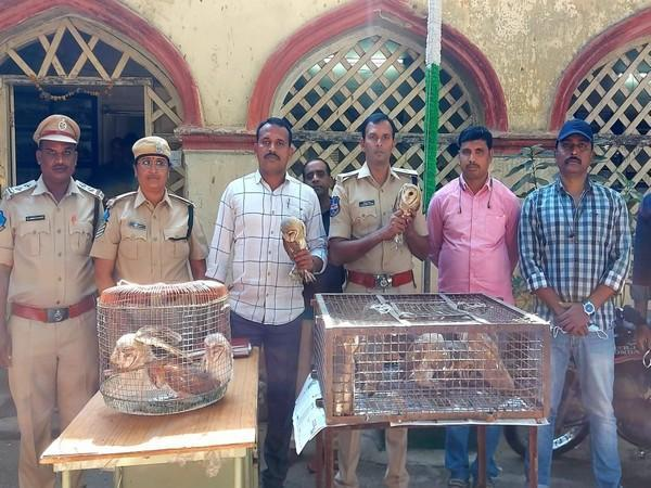 The accused, Kamran Ali Farooqui, with the rescued birds. (Photo/ANI)