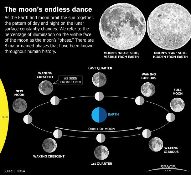 See the moon phases, and the difference between a waxing and waning crescent or gibbous moon, in this Space.com infographic about the lunar cycle each month. <a href=http://www.space.com/62-earths-moon-phases-monthly-lunar-cycles-infographic.html>See the full infographic</a>.