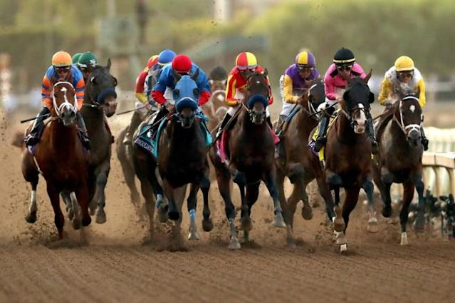 The field compete in the 2019 Breeders' Cup Classic at Santa Anita (AFP Photo/Sean M. Haffey)