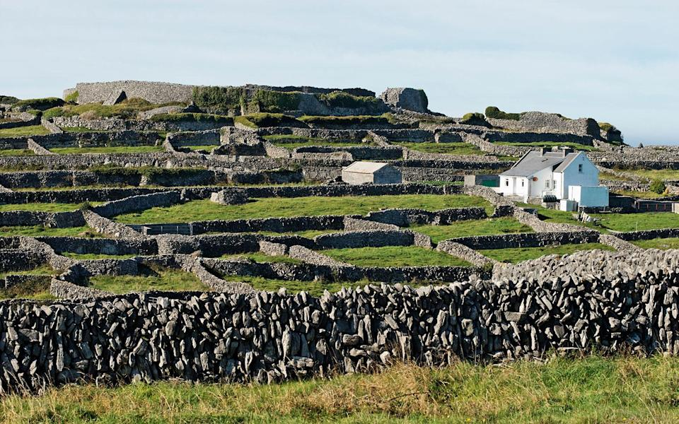 """<p>The pleasures of Inis Meáin are simple: a walk along the coast to the thunder of Atlantic swells; a tableau of fissured limestone that glimmers in the mist; the best potatoes you'll ever taste. At the stone-walled <strong>Inis Meáin Restaurant & Suites</strong> <em>(353-86/826-6026; <a href=""""http://www.inismeain.com/"""" rel=""""nofollow noopener"""" target=""""_blank"""" data-ylk=""""slk:inismeain.com"""" class=""""link rapid-noclick-resp"""">inismeain.com</a>; suites from $350; dinner for two $125),</em> owners Marie-Thérèse and Ruairí de Blacam have equipped the five suites with bicycles and fishing rods; oversize beds come with alpaca throws, and 30-foot-wide windows look out onto Galway Bay and Connemara. The real allure is the 30-seat glass-walled restaurant, known for its deceptively basic fish dishes and homegrown vegetables. For dessert, try the seaweed pudding in wild-berry sauce at <strong>An Dún B&B</strong> <em>(353-87/680-6251; <a href=""""http://www.inismeainaccommodation.com/"""" rel=""""nofollow noopener"""" target=""""_blank"""" data-ylk=""""slk:inismeainaccommodation.com"""" class=""""link rapid-noclick-resp"""">inismeainaccommodation.com</a>; doubles from $98; dinner for two $50; dessert for two $15)</em>.</p><p><strong>T+L Tip:</strong> Hike the 1 1/2-mile Cliff Walk, with the <a href=""""http://www.travelandleisure.com/attractions/the-cliffs-of-moher-ireland"""" rel=""""nofollow noopener"""" target=""""_blank"""" data-ylk=""""slk:Cliffs of Moher"""" class=""""link rapid-noclick-resp"""">Cliffs of Moher</a> as your backdrop. -<em>Laura Read</em></p>"""