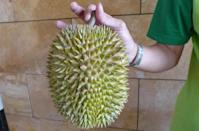 """The Bamboo can be distinguished by its elongated shape and thin thorns. You will notice a small """"valley"""" running down the middle of the durian when it is opened. (Photo by: Erin Kimbrell/Yahoo Singapore)"""