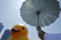 A visitor uses an umbrella to block the heat of the sun as he views a giant yellow duck in the port of Kaohsiung, Taiwan, Thursday, Sept. 19, 2013. Putting up with high temperatures, thousands flocked to the port of Kaohsiung, the first leg of the Taiwan tour, to see Dutch artist Florentijn Hofman's famous 18 meter (59 foot) yellow duck, a gigantic version of the iconic bathtub toy used by children around the world. (AP Photo/Wally Santana)