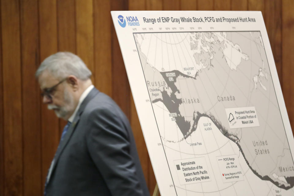 CORRECTS DATE OF RULING - FILE - In this Nov. 14, 2019, file photo, Federal Administrative Law Judge George Jordan steps past a display before a hearing in Seattle, to help determine whether a small American Indian tribe can once again hunt whales. The Makah Tribe, from the northwest corner of Washington state, conducted its last legal hunt in 1999. On Thursday, Sept. 23, 2021, Jordan recommended that the Makah be allowed to resume whaling along the coast of Washington state, as their ancestors did. (AP Photo/Elaine Thompson, File)