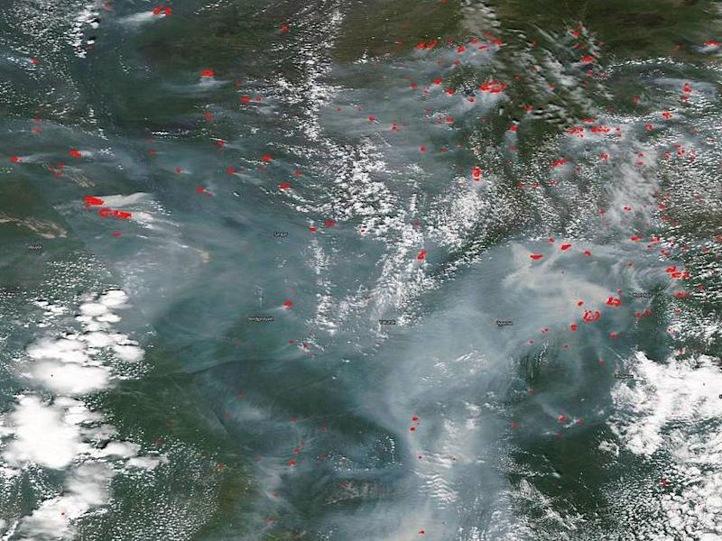 NASA's Aqua satellite reveals Siberian fires filling skies with smoke in recent days: NASA