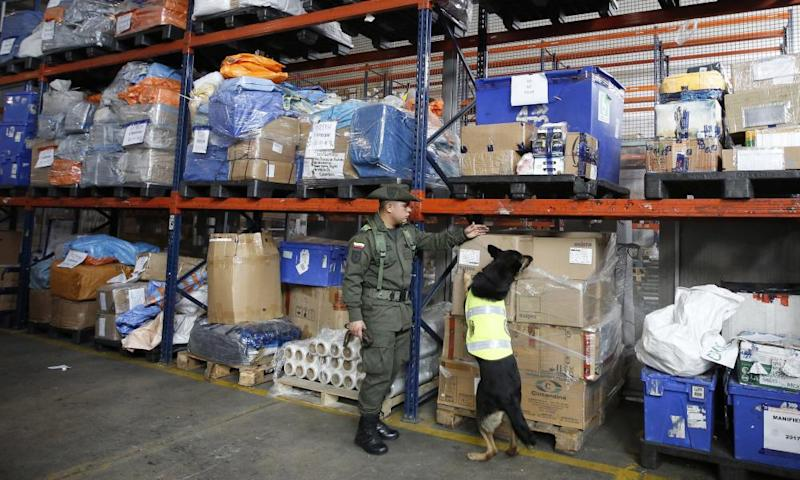 Drug dog Sombra looks for drugs in the cargo hold of El Dorado airport in Bogotá, Colombia, on 26 July.