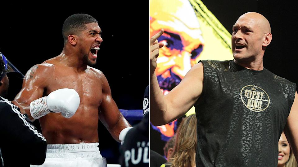 Pictured here, heavyweight boxing rivals Tyson Fury and Anthony Joshua.